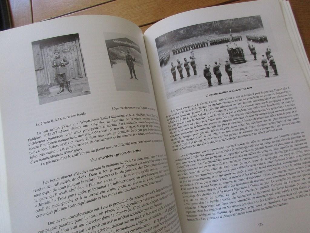 Les Chantiers Jeunesse Francaise Reichsarbeitsdienst Malgre Nous Jf